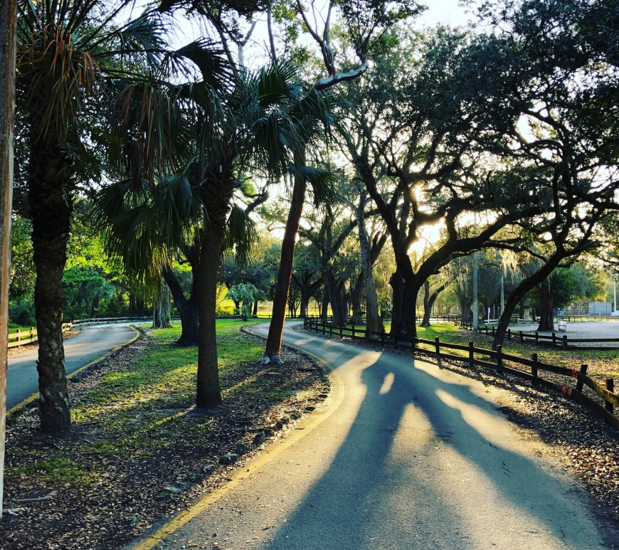 Tree-lined running path at Indian Hammocks Park Miami